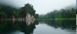 Khao Sok Rainforest Discovery